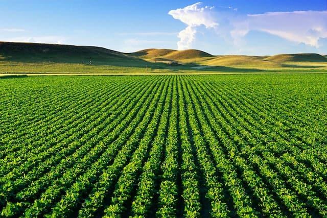 bảng giá đền bù đất nông nghiệp năm 2016